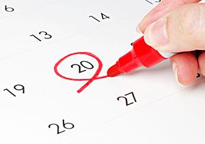 カレンダーの写真。20日の日に赤丸が付いている。